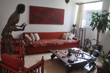 Nice private room in Tlalpan Mexico - Huis