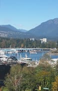 Picture of Coal Harbour- Marina View