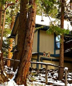 Sierra Mountain House with Hot Tub! - Mi-Wuk Village - House