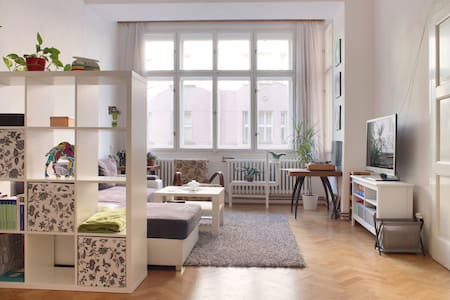 Large Apartment in the center - Prague