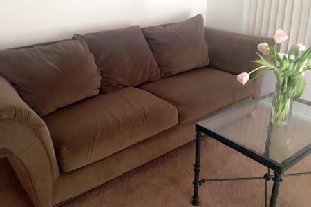 comfy sofa with great location!