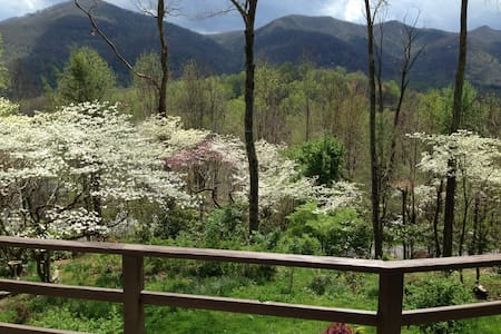STONEY CREEK BUNGALOW - Maggie Valley - Ev