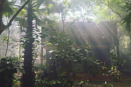 Meru  Unique, Spacious, Tranquil Sanctuary - Krong Siem Reap