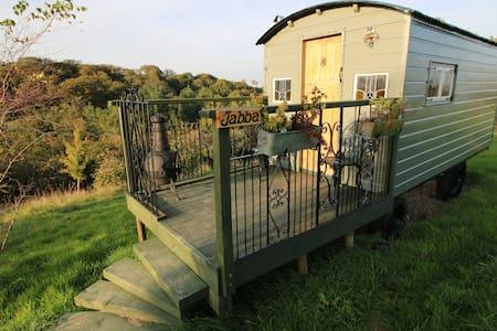 Shepherds hut, Nr Dartmoor - Northlew - Hut