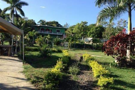 Gafrris gardens - Montego Bay - Loft
