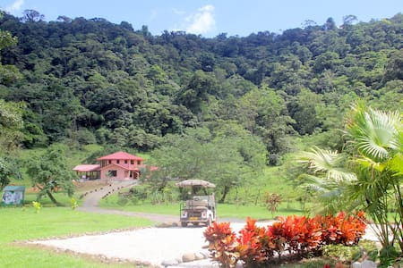 There's a place in Costa Rica like no other.. it's ours.. and if Epicure would return, he would certainly call our finca his garden. You may share it with us for a few hours or a few days. We offer 2 private rooms in a separated guesthouse !