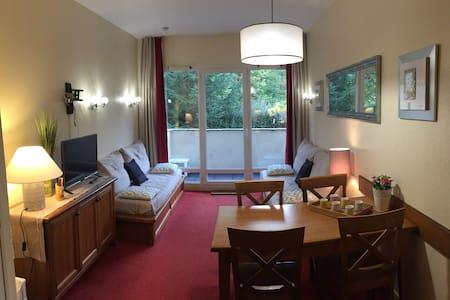 Appt confortable, vue sur montagne - Apartment