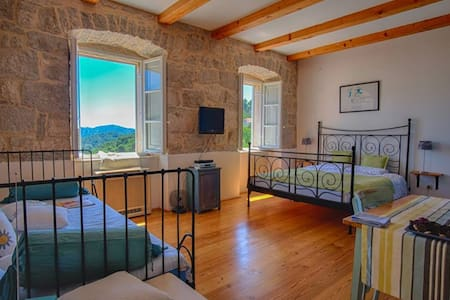 Charming apartments in Island Mljet - Apartment
