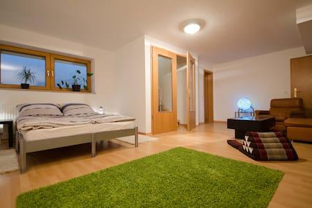 Großes 3-Zimmer Apartment m. Garten - Wohnung