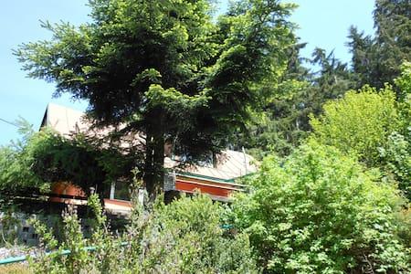 Ubytování U lesa - Huis