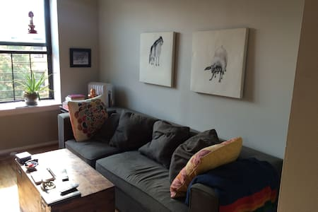 My boyfriend and I live in this large and sunny apartment in trendy Crown Heights, Brooklyn. We live within 10 minutes of Beautiful Prospect Park, the Brooklyn Museum, the Brooklyn Botanical Garden, and trendy Franklin St bars and restaurants.