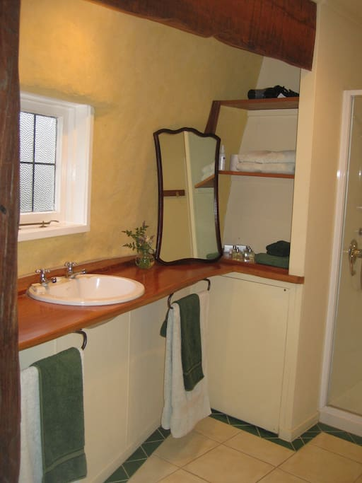 Bathroom with a shower made for two.