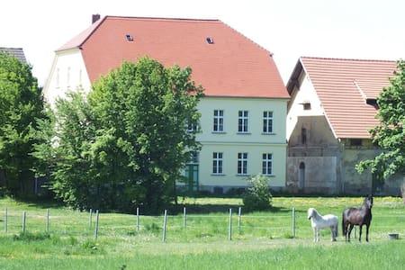 Kutscherwohnung auf dem Rittergut! - Falkenstein/Harz - Daire