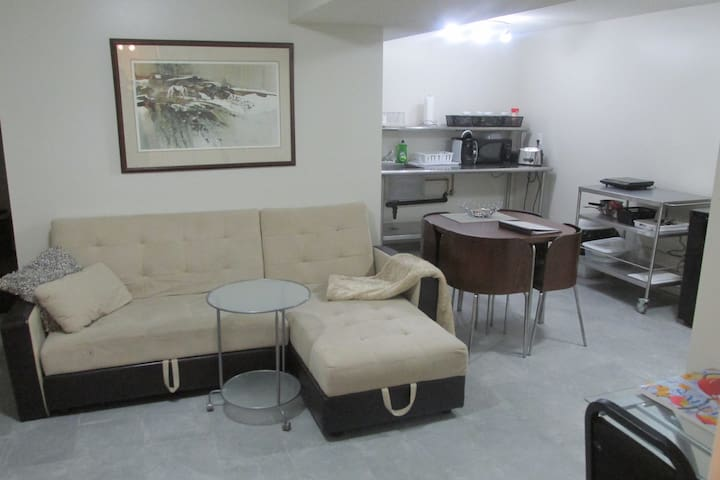 beautiful basement apartment apartments for rent in