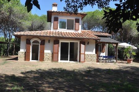 Villa in pineta in riva al mare