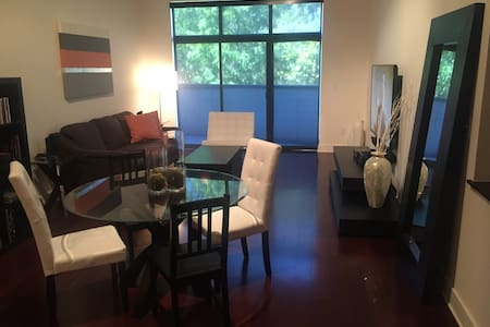 Amazing Condo in Buckhead /Downtown
