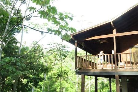 Ecological Jungle Tree House