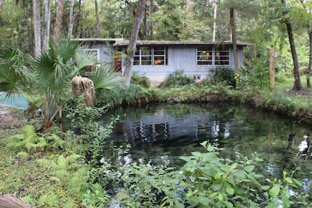 Lagoon Cabin on Homossasa River - House