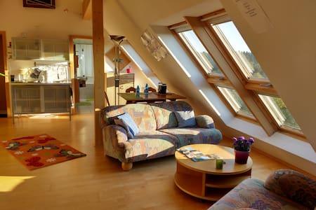 3-Kaiser-Berge: separate Ferienwohnung für 2Erw+2K - Gehele Verdieping