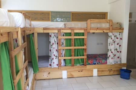 Youth hostel bed, common kitchen