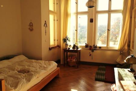 Zimmer in gemütlicher Altbau WG - Berlino