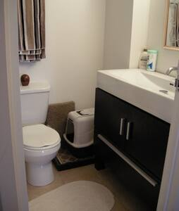 1 bedroom, share bathroom with cat - Apartment