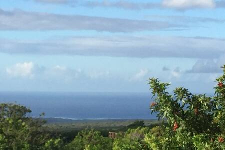 Romantic Secluded loft - Naalehu