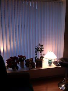 Gæsteværelse / pendlerværelse - Apartment