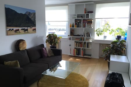 Cozy apartment in the city center - Apartment