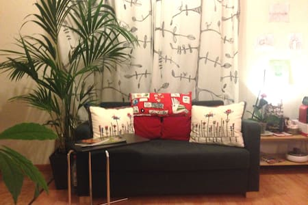 The apartment has got 1 room and a cosy living room with kitchenette. It has got a balcony with a view to the park. The area is quiet and the centre is about 10 minutes walking distance.