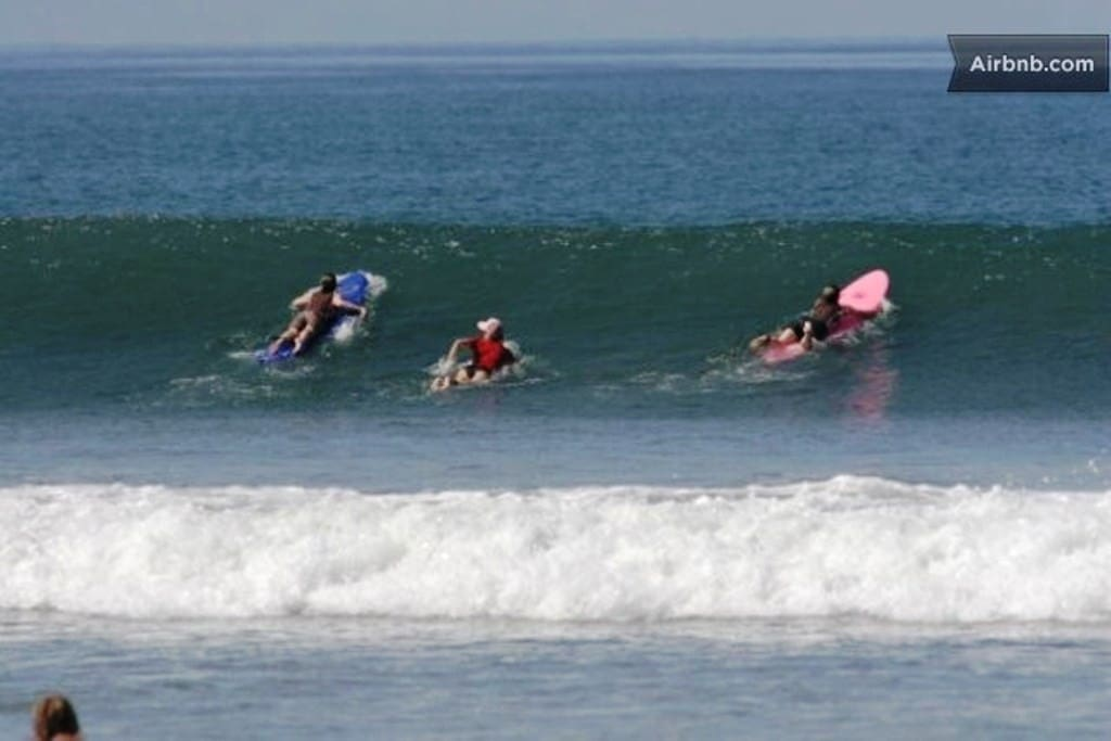 Surfing  Beach House