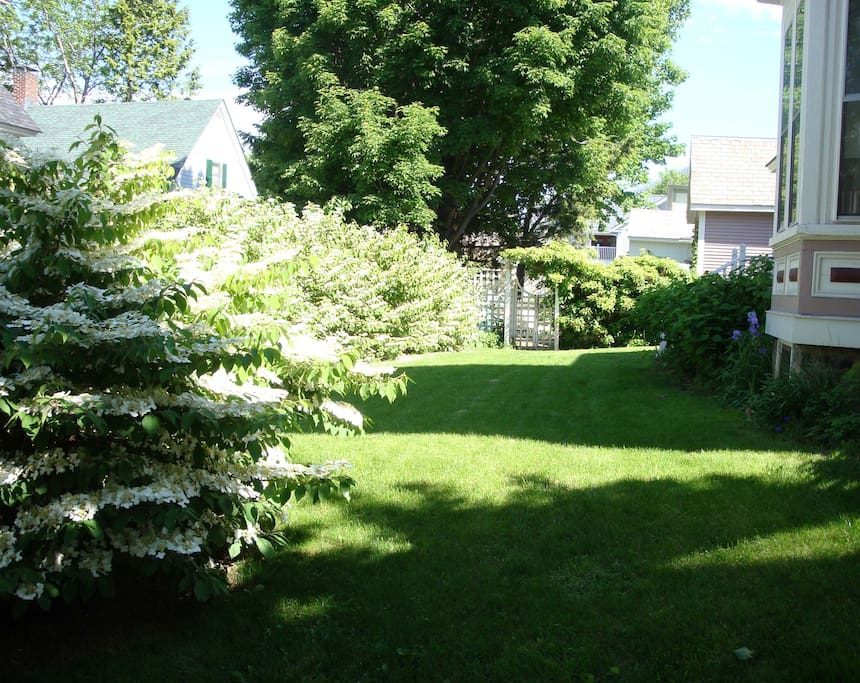View of side yard in May. Patio to the rear