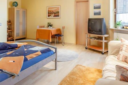 1-bedroom/1-bath apartment, kitchen - Ev