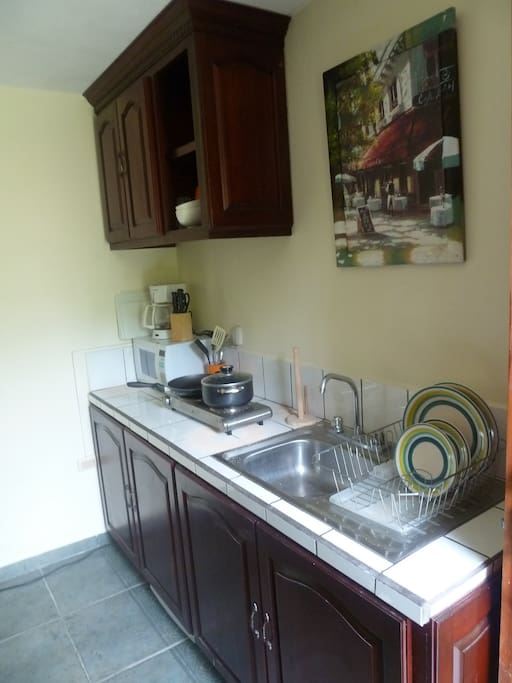 Kitchen - fully equipped with hidden mini-fridge, electric stove, microwave, coffee maker, and all crockery, utensils and silverware