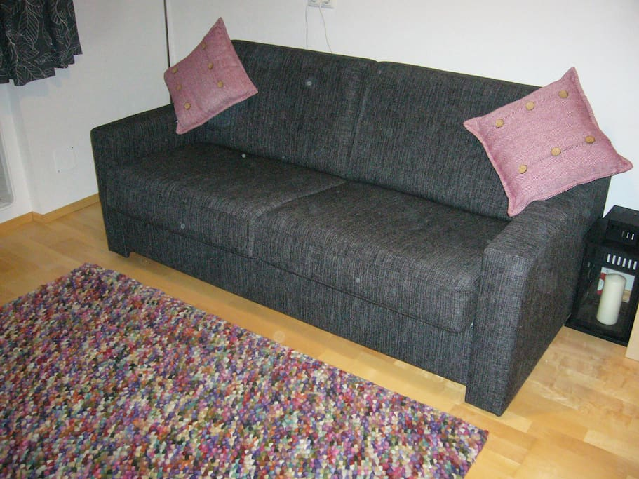 Sofa bed in the living room before converting.