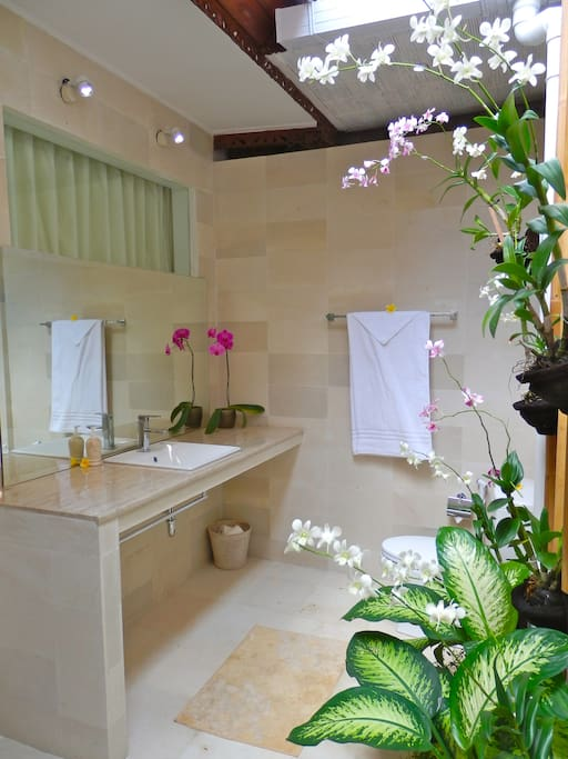 Bath 2 ~ Shower in the moonlight or bathe in the sun whilst enjoying the orchids.