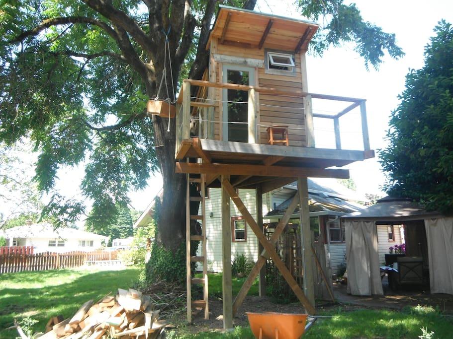 Tree House Tiny House and Main Home