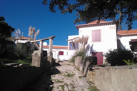 Flor da Murta - Casa antiga com jardim romântico - House