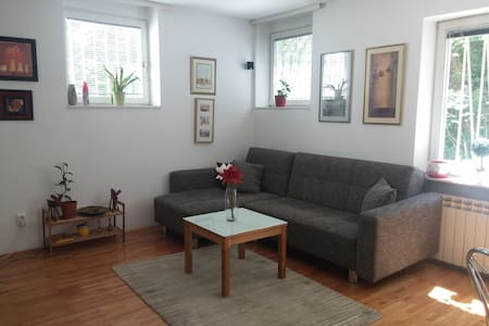 Cozy apartment in city center /PERFECT LOCATION/ - Sarajevo - Apartment