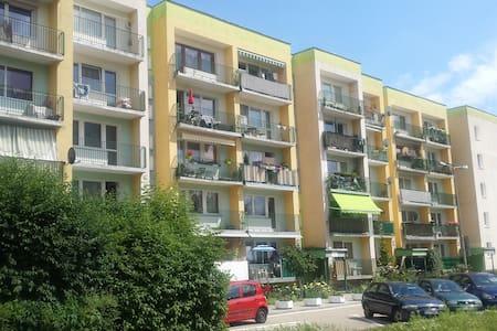 Przytulne mieszkanie wśród zieleni blisko centrum - Wohnung