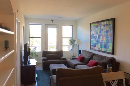 Amazing SoCo Location - 78704 - Austin - Apartment