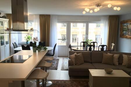 Modern Apartment with big room in VASASTAN - Stockholm - Condominium