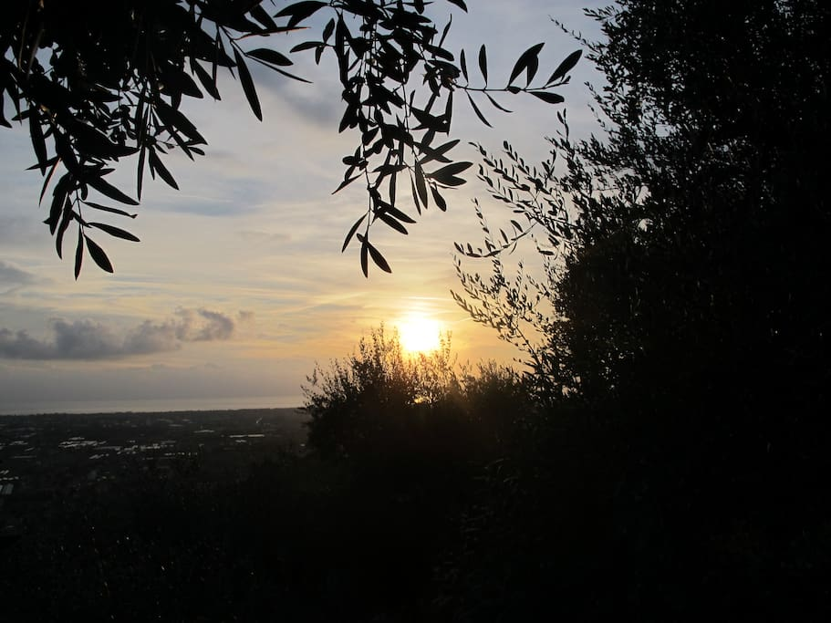 SUGGESTIVE TUSCAN SUNSET