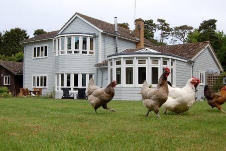 Hare lodge b&b - Peasenhall - Bed & Breakfast
