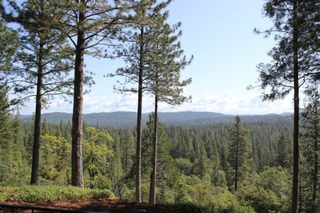 View of Tahoe National Forest from the Deck