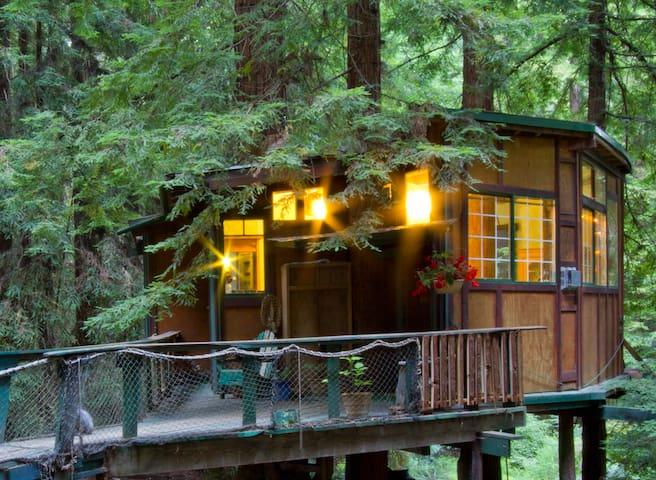 Redwood Treehouse Santa Cruz Mtns. - Casa sull'albero