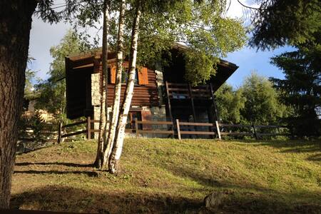 Villa Beatrice - A trip to paradise - Lejlighed