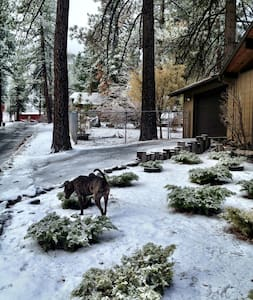 Cozy 1bd/1bath 3 miles from Mt High - Wrightwood - Haus