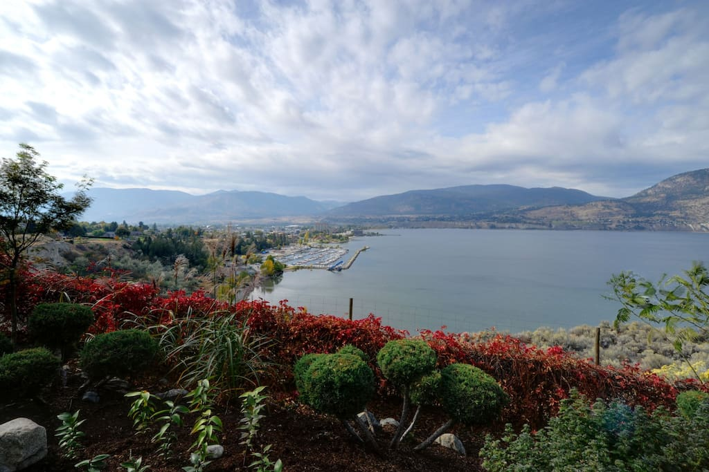 Villa Orion delivers more than a dramatic view. It's magic! The lake side garden - Echinacea, lavender, bonsai, pink powders, grasses, lilies, roses - with a vast and impressive view to Penticton and Okanagan Lake. Watch the lazy sail boats drift by, marv