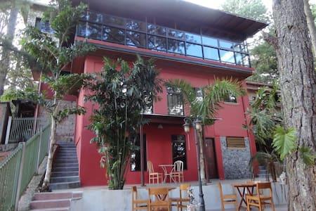 Villa Pine Forest - Santa Lucia - Santa Lucia